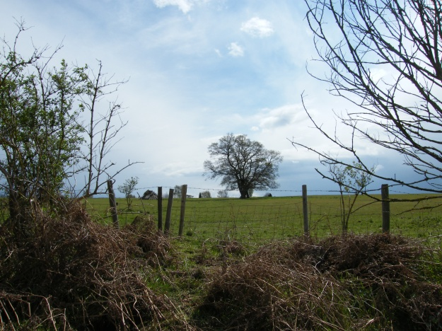 Southern horizon from near Whitmoor Barrow