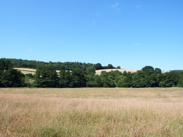 Chilworth Moat from South